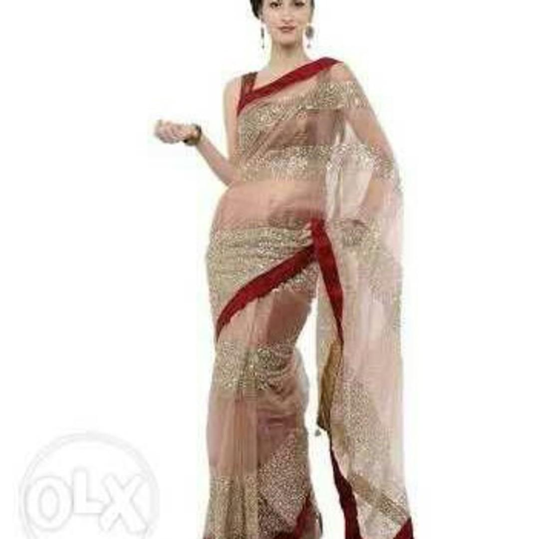 Elanic Golden Net Saree With Red Velvet Border And Sequence Work